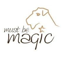 MUST BE MAGIC