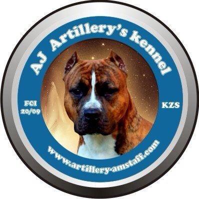 AJ ARTILLERY'S